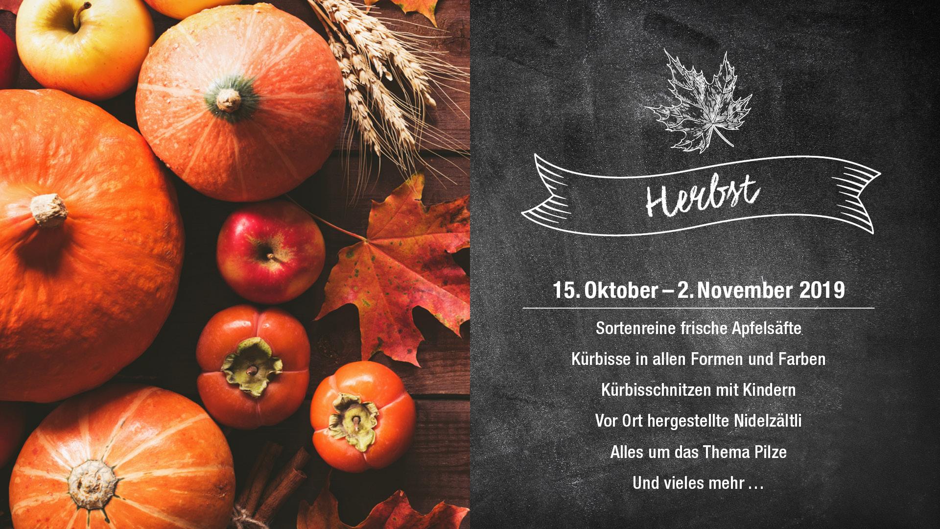 Herbst im Migros Neuwiesen